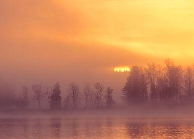 Foggy sunrise by the lake