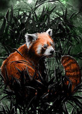 """A Red Panda"""