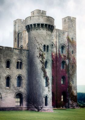 a castle with ivy on its tower