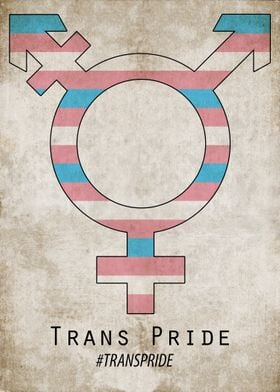 If you need some vintage trans pride then this is a thi ...