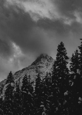 North Cascade Winter Blizzard