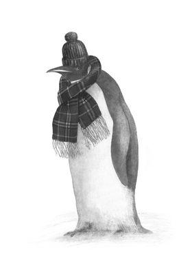 South Pole Essentials