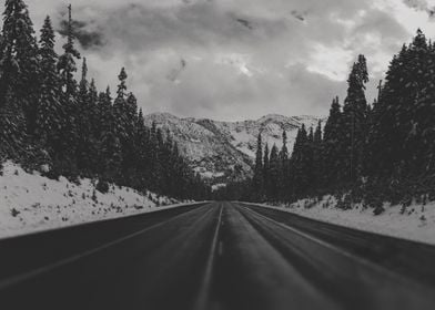 December Road Trip in the Pacific Northwest
