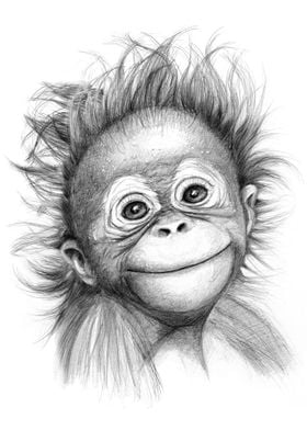 Happy orang outan baby G2015-121 graphite drawing by S ...