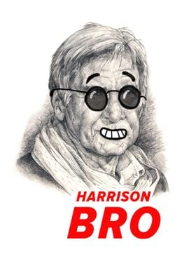 I think that Harrison Ford is bro of each of us.