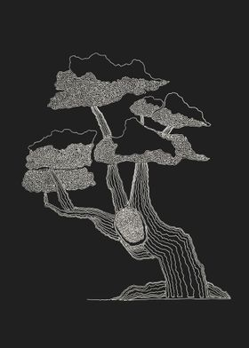 Bonsai drawn of one line. Line begins at the bottom to  ...