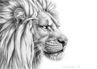 Lion profile G006 by Svetlana Ledneva-Schukina ref. G20 ...