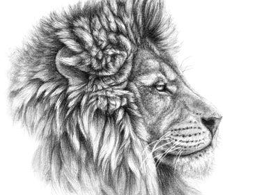 Lion portrait G044 by Svetlana Ledneva-Schukina ref.G20 ...