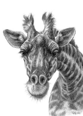 Giraffe G049 by Svetlana Ledneva-Schukina ref.G2012-049 ...
