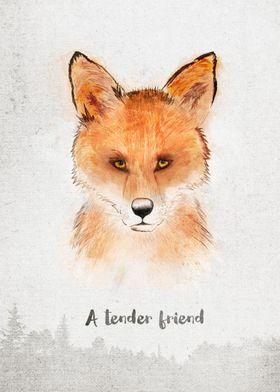 Spirits . Fox - A tender friend