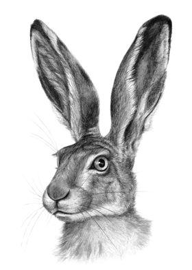 Cute Hare G126 by Svetlana Ledneva-Schukina ref.G2016-1 ...