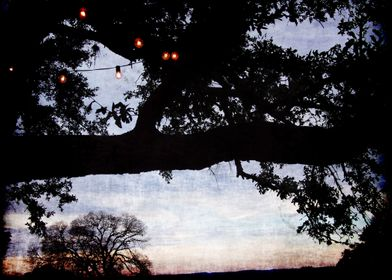 Texas Hill Country at Dusk