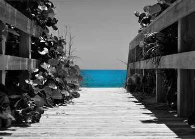Partial color of Cocoa Beach