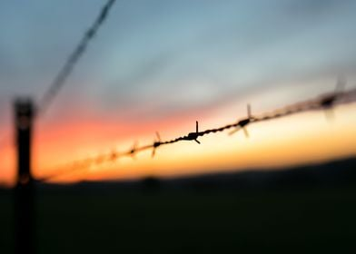 Barbed wire on sunset