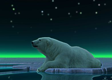 A peaceful moment in the long Arctic night. A Polar Bea ...