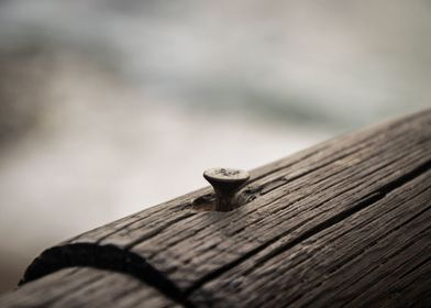 An everyday object, a screw in a wooden fence, next to  ...
