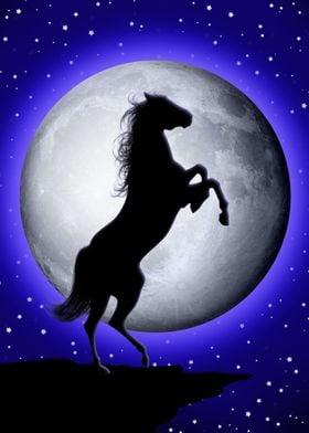 Wild Horse on Blue Moon