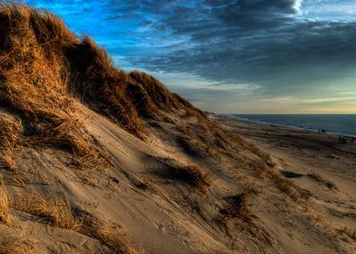 Danish dunes, from Hvide S