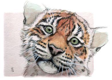 Tiger Cub 887 by Svetlana Ledneva-Schukina watercolor, ...