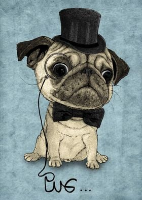 Pug; Gentle Pug (v3)