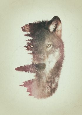 Wolf and habitat double exposure artwork.