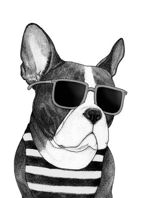 Frenchie Summer Style B&W