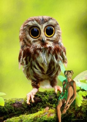 """""""Who's Looking At Hoo"""" At first this painting was going ..."""