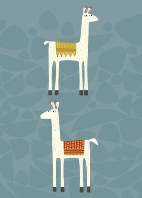 Two llovely llamas