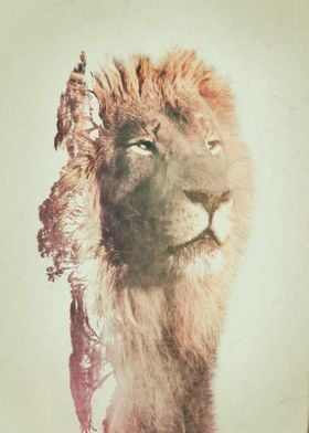 Lion and habitat double exposure artwork.