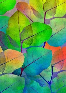 Translucent Leaves