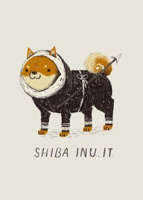shiba inuit!