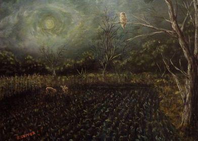 In an eerie night, a Barred Owl perched on a dead oak t ...