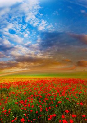 A stunning landscape of a