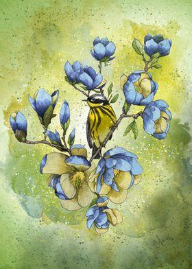 Magnolia Blues