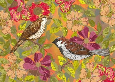 Pretty little sparrows in a hedgerow with wild briar ro ...
