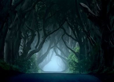 Dark Hedges at cold dawn. Ireland