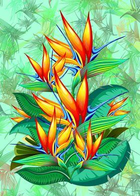 Bird of Paradise Flower Exotic Nature
