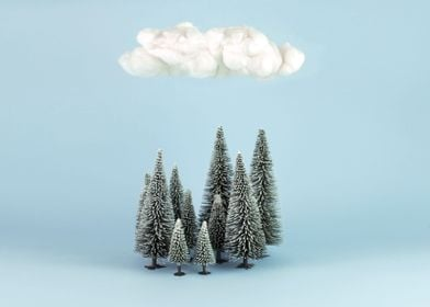 A cloud over the forest