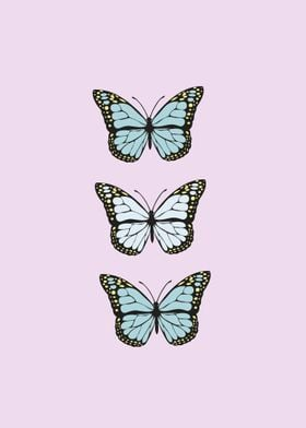 butterflies collection illustration