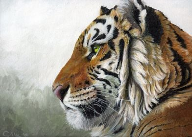acrylic painting on canvas  Tiger's profile by Svetlana ...
