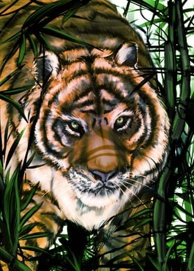 I love tigers, simple as that! Cheers and Enjoy!