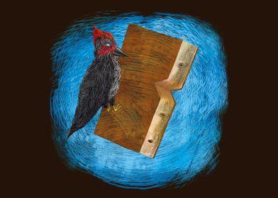 bookpecker - woodpecker