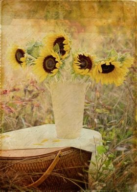 Sunflowers in a field with a vintage look and feel.