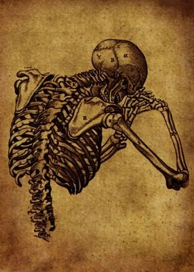 Anatomic76
