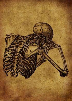 Anatomic74