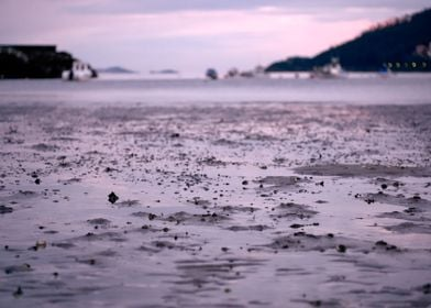 A low tide beach at sunset. Placed in the Death Coast i ...