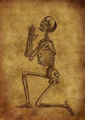 Anatomic81
