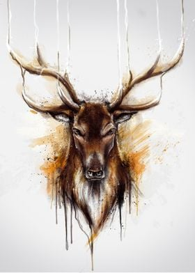 Deer (Alpha series)