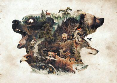My nature surrealism animal tribute to the predators an ...