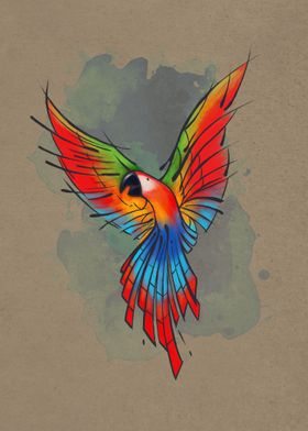 Colors of the Macaw